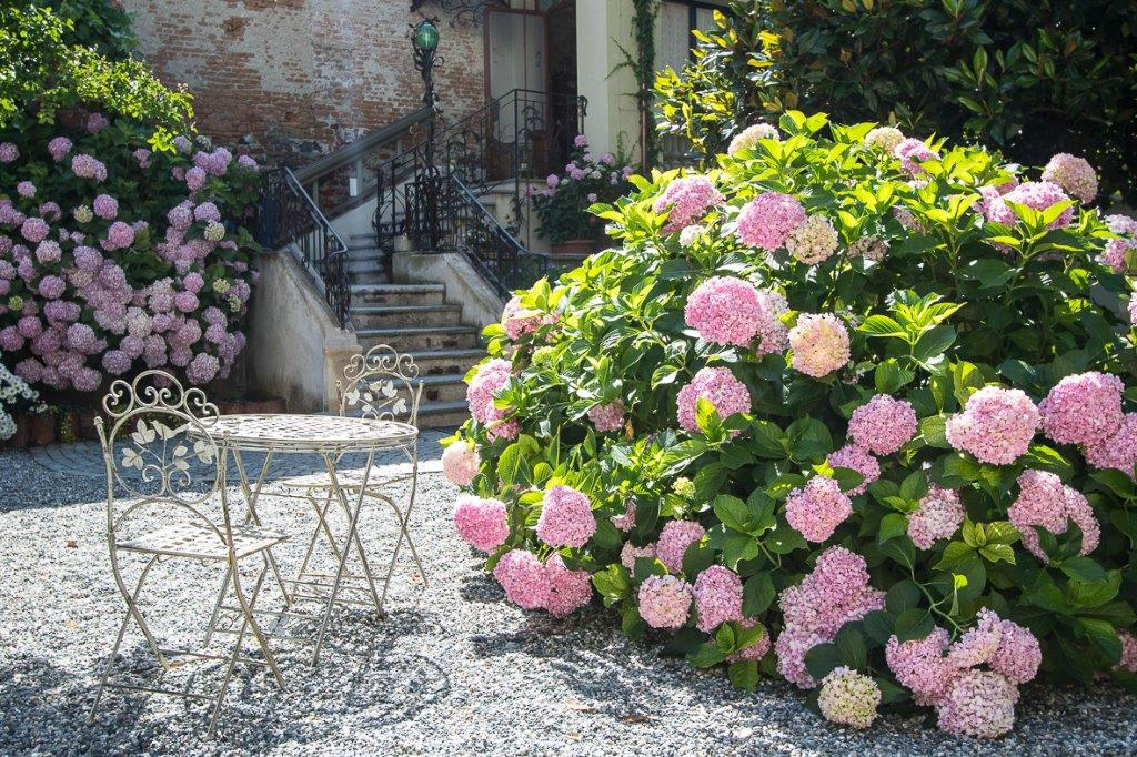 le jardin fleuri gusti liberty turismo torino e provincia. Black Bedroom Furniture Sets. Home Design Ideas