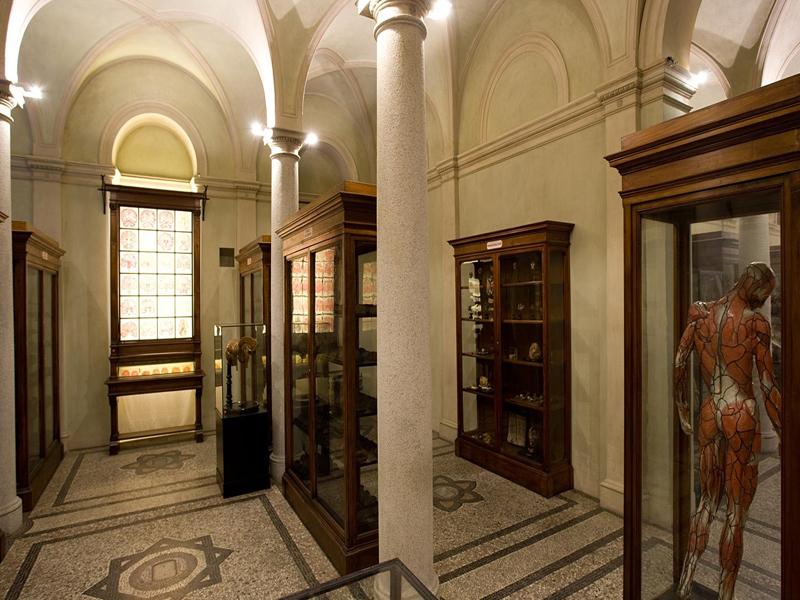 MUSEO DI ANATOMIA UMANA | Turismo Torino e Provincia