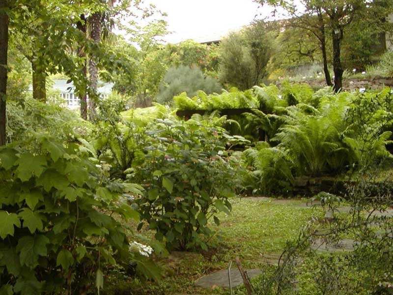 Giardino_botanico_rea