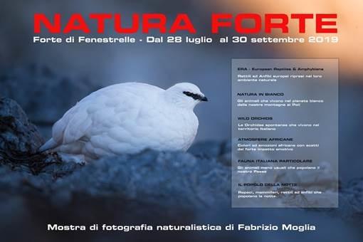 Naturaforte