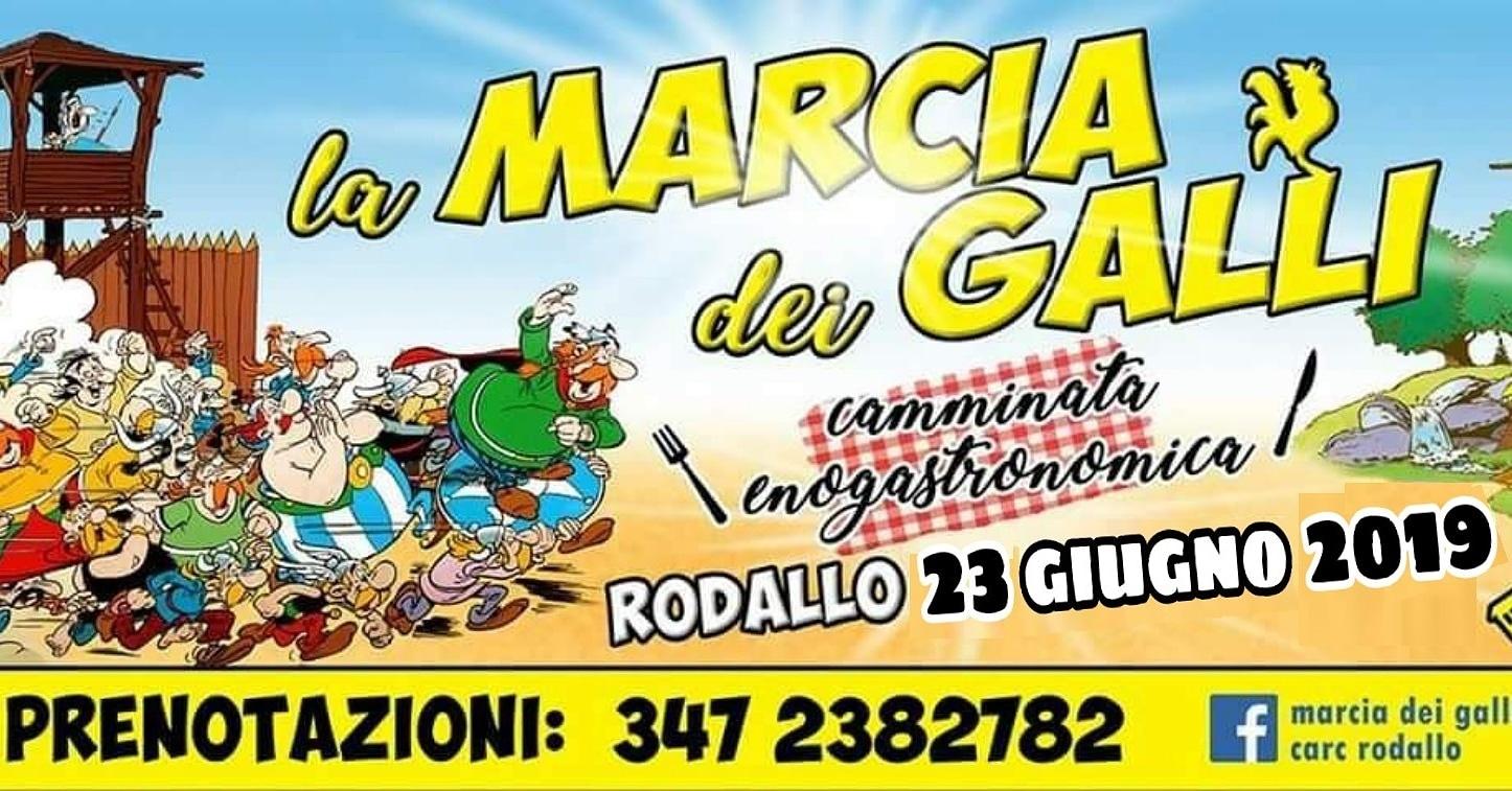 Rodallo_marciadeigalli