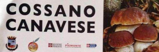 Sagra_del_fungo_a_cossano_canavese-2