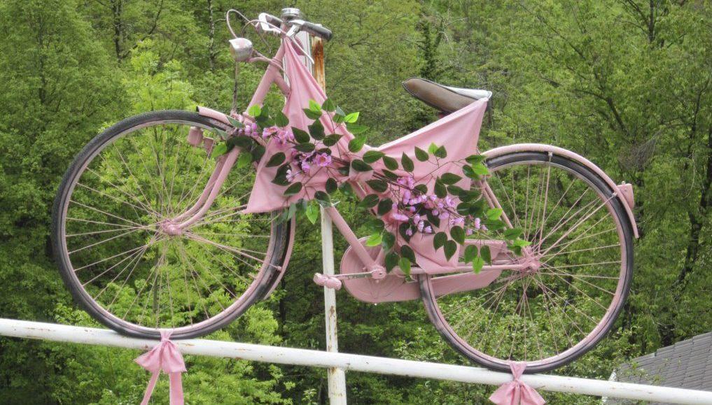 Viu-bici-rosa