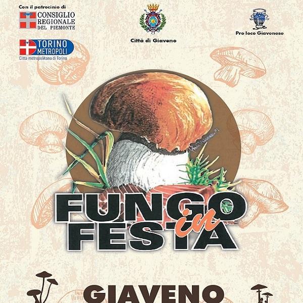 Fungo(2)